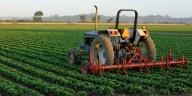 StockGuru Alert: Agricultural Stocks Moving Up