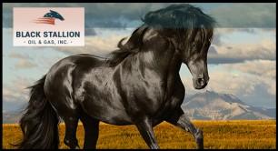 Trade Alert: Black Stallion Oil & Gas Continues it Move Upward on Heavy Volume