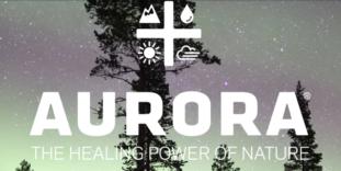 StockGuru Profile: Aurora Cannabis Inc. $ACBFF #OTCQX #TSX-V #ACB